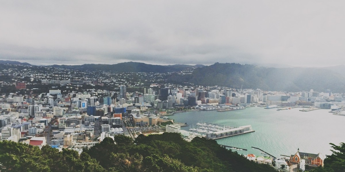 Pros and Cons of Moving to Wellington